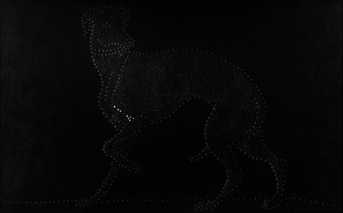 cane-copia